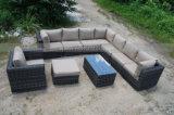 O vime do jardim/sofá ao ar livre secionais do Rattan ajustou-se (MTC-189)