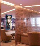 Pantalla LCD espejo mágico para baño /Aseos /Dess/Make-up/Salón/dormitorio