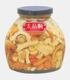 In Büchsen konservierter Mischungs-Pilz im Glas mit Qualität
