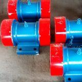 Motor vibratório de vibração elétrica Série Xv
