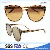 Солнечные очки ацетата черепахи новизны конструктора тавра высокого качества