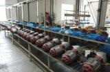 1.5 Tonnen-niedriger Durchfahrtshöhe-Typ elektrische Kettenhebemaschine