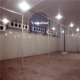 Kaltlagerung für Fleisch (Rindfleisch, Schweinefleisch, Hammelfleisch…) durch Changzhou-Zwischenlage-Panel-Produzenten