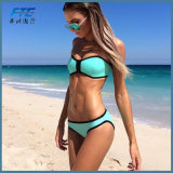 Bikini sexy delle 2017 lo Swimwear stabilito del nuovo donne spinge verso l'alto la vita bassa dei bikini