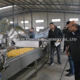 Qualitäts-niedriger Preis-Popcorn-Maschinen-Handelsverbrauch für mehr Nutzen