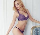 Modieus zie door de Sexy Reeks van de Bustehouder van het Ondergoed (FPY306)