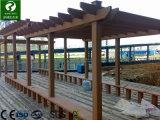 El parque al aire libre compuesto de plástico Co-Extrusion columna barandilla de madera