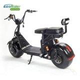 Ecorider 60V 1000W 리튬 건전지 전기 스쿠터 2 바퀴