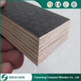 переклейка листа древесины красной сосенки тимберса 21mm Shuttering прокатанная конструкцией