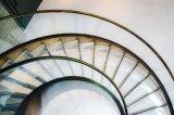 Escalera curvada del acero inoxidable con la pisada de cristal del pasamano y de madera