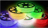세륨 EMC LVD RoHS 보장 2 년, 백색 LED 유연한 지구 빛 LED 밧줄 (SMD3528-60)