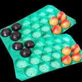 Eco-Friendly SGS certificado FDA Customed descartáveis de plástico PP Bandeja de frutas