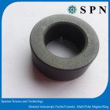 알파철 에어 컨디셔너 압축기를 위한 광선 고리 자석