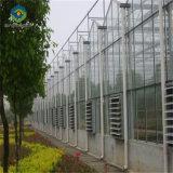 Клубничный все оборудование гидропоники стекла парниковых