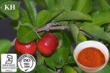 La vitamina C 17%, un 25% de extracto de cereza Acerola