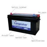 Niedrige Selbstentladung-Automobilbatterie Mf-N100 12V100ah 12volt