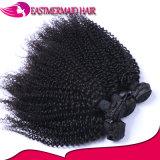 2017 cabelo indiano Curly Kinky quente do cabelo humano das vendas 100%Virgin