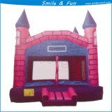 Castello rimbalzante gonfiabile di vendita calda con la trasparenza combinata per i capretti