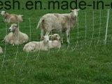 목초지 가축 메시---우수 품질 Ss 304, 316
