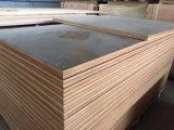 Высокая лоснистая красотка декоративная и меламин ранга мебели смотрели на деревянную доску Blockboard