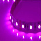 Rosafarbener heller Stab der Farben-LED