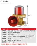 Clignotement anti-déflagrant professionnel de l'usine Bdj-02 voyant d'alarme audible et visuel d'alarme