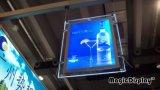 La magia de iluminación LED de doble cara de acrílico de instrumentos (MDCLB-A2D)