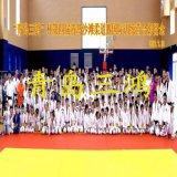 Tatami de Judo de l'exercice de puzzle tapis tapis de salle de gym Tapis de sol
