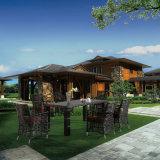 Mobilia esterna per qualsiasi tempo del giardino di disegno popolare di Glassic che pranza presidenza con la Tabella 6-8 dalla persona (YT620)