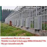 De nieuwste en Goedkoopste Ventilator van de Uitlaat van /Poultry van de Serre Jinlong
