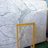 Polished мрамор Bianco Carrara плиток/итальянский мрамор/белый мрамор
