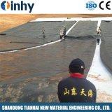 HDPE di plastica industriale Geomembrane strutturato di massima dello strato del materiale di riporto