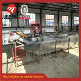 Línea que se lava equipo del mejor de la venta vehículo del verde de la limpieza de la fruta
