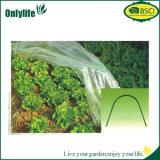 Serre chaude nette résistante UV de tunnel de jardin d'Onlylife