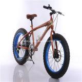 Großhandelsfahrrad-zusätzlicher Erwachsener Sports MTB Gebirgsfahrrad-Fahrrad