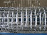 La fabbricazione di professione ha galvanizzato la rete metallica saldata con il prezzo più basso