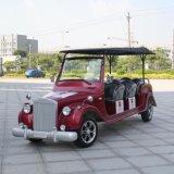 Vehículo eléctrico de encargo del golf del club de 8 asientos para la venta (DN-8D) con Ce del fabricante de China