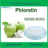 높은 Quality Apple Extract 90% Polyphenols 또는 Phloridzin