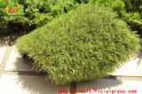 Tappeto erboso sintetico di vendite del giardino popolare del PE e dei pp dalla fabbrica