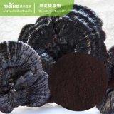 Estratto naturale del fungo di 100% Reishi