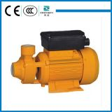 Favorable Price를 가진 QB60 Vortex Electric Clean Water Pump