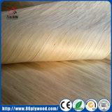 Folheado Recon branco de madeira da face de Gurjan do Poplar de China 0.5mm