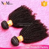 アフリカのねじれた巻き毛のブラジルのバージンのRemyの人間の毛髪の織り方