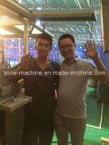 Js-2000X Samll bottiglia di olio 2 cavità soffiaggio macchina con CE
