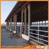 Оцинкованного металла крупного рогатого скота во дворе ограждения