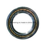 Haute qualité SKF Roulement à rouleaux cylindriques Nu221 CJCE C3 le roulement à rouleaux bon prix