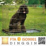 Diferent Cage de taille pour les produits pour animaux de compagnie