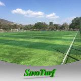 كاملة اصطناعيّة مرج عشب لأنّ ملعب, لعبة هوكي, كرة قدم
