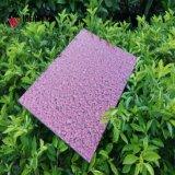 Serie speciale del poliestere & sguardo ASP del granito e della pietra del rivestimento di PVDF