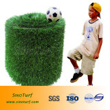 [كو] شكل كرة قدم اصطناعيّة عشب (كرة قدم اصطناعيّة مرج/تمييه عشب) منتوج حارّة